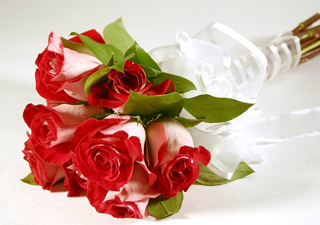 45. Gönülçelen -Inima furata - Heart Stealer - General Discussions - Comentarii - Pagina 4 Trandafiri